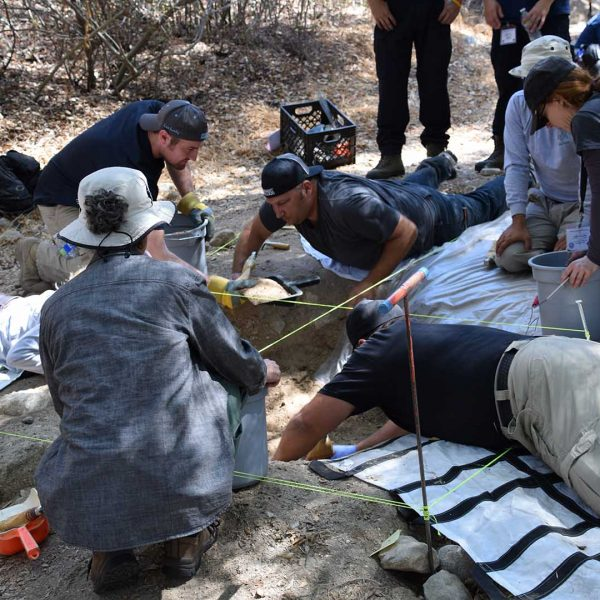 Forensic students learning in the field